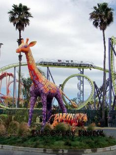 six flags vallejo bring a friend day