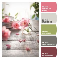 Paint colors from ColorSnap by Sherwin-Williams Sharon Williams, Hunt Club, House Colors, Color Combinations, Paint Colors, Theatre, Dancing, Lime, Random
