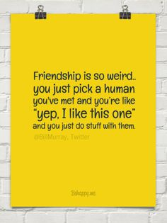 "Friendship is so weird.. you just pick a human you've met and you're like  ""yep, i like this ... by @BiIIMurray, Twitter #51090"