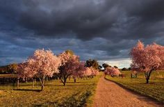 Sometimes you just need a Mudgee Region getaway...