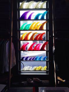 Rainbow Fins