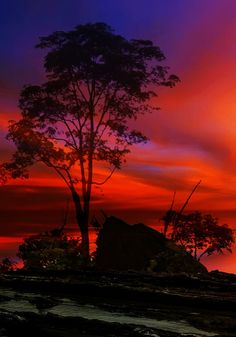 Flaming Red sunset!