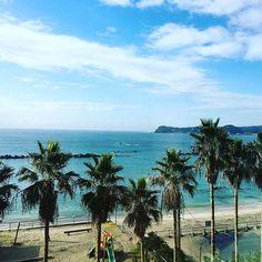 【_missrika_xx】さんのInstagramをピンしています。 《Good morning sunshine ☀️🌴🌊 . #20161105 #Katsuura #ocean #view #morning #beach #blue #sunny #perfection #landscape #trip #travelgram #勝浦 #青 #海 #晴れた #海沿い散歩しかたかったな #여행 #여행스타그램 #바다》