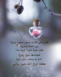 Quran Quotes Love, Wisdom Quotes, Words Quotes, Latest False Ceiling Designs, Flower Girl Photos, Happy Eid, Islam Facts, Life Lesson Quotes, Romantic Love Quotes