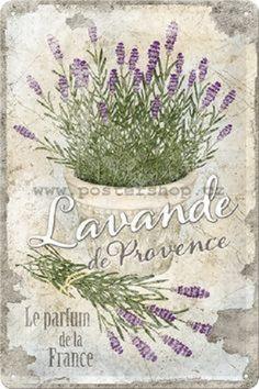 lavender      1,2k pinů