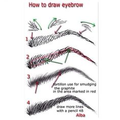 How To Draw Eyebrow?  If this is on your face and not on paper then you need to go with your face shape, width, how your hair grows naturally or how they grew naturally from before pictures. This is a beautiful brow that is not a one fits all. Your natural brows shaped & cleaned up are what looks fabulous. There is a beginning point and an ending point and the arch is not found on text books but on your face. You need  a professional who looks at brows as art to make them look fabulous on…