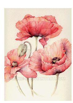 Oriental Poppies by Janie-G on DeviantArt