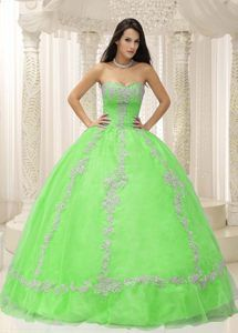 Dramatic 2013 Beaded Green Sweetheart Appliques Quinceanera Gown Dresses