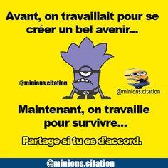 NB:compte de secours :@minionz.citation #minionscitation @minions.citation
