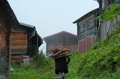 Woman in Hazindag Plateau - Camlihemsin, Rize