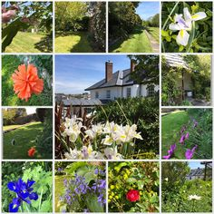 Our Garden. Licensed for weddings, perfect for marquee parties, available for events and conferences. Call Debbie on 01288352005 to find out more x