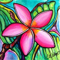 plumeria, flower, tropical, Hawaii, Colleen Wilcox