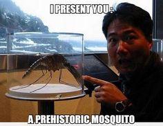Prehistoric Horror #lol #haha #funny