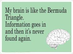 My brain is like the Bermuda Triangle. Information goes in, and then it's never found again.