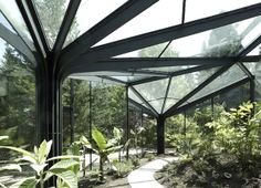 Switzerland is certainly a far cry from a tropical oasis, but Buehrer Wuest Architekten has designed this stunning greenhouse to grow warm climate-plants like bananas and papayas inside the Gruningen Botanical Garden. Inspired by organic shapes found in nature, the steel and glass greenhouse echoes a cluster of trees and branches that create a gorgeous light-filled canopy for these delicious plants to grow in peace.