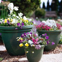 Go with Groups  One well-planted container looks great on its own, but a grouping can be stunning. Here, a colorful mix of pansies, violas, lobelia, stock, and kale creates lots of interest. Use them by a doorway, next to a path, or to add cheer to bare spots in your spring garden.  Hint: Use three different sizes of the same kind of container to give the arrangement a more put-together look.