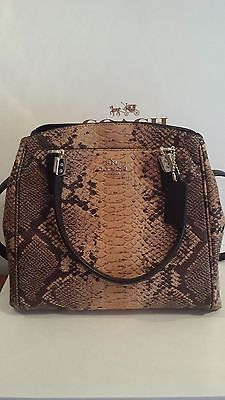 NEW ARRIVAL COACH SNAKE SKIN MINETTA NATURAL  F35271 Tag.Dust bag. Receipt.