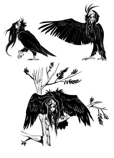 Sirin by Drkav @deviantART © Drkav: Sirin are Russian bird-like beings (like a harpy). Design Based on Cinereous Vulture