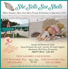 She Sells Sea Shells TOTI Media, Inc. | Marketplace My favorite place to shop!