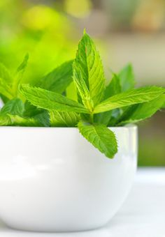 7. Mint Leaves