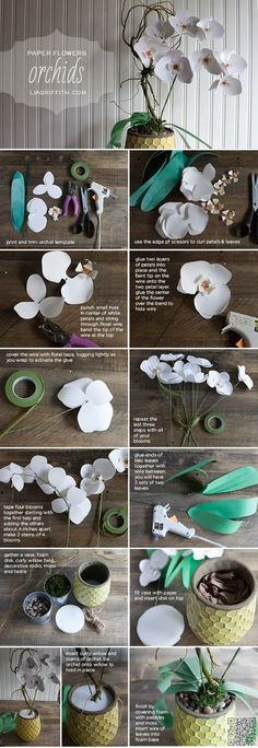 5. #Paper Orchids - So Many #Pretties! Let's All Make These Paper #Flowers Right Now ... → DIY #Right