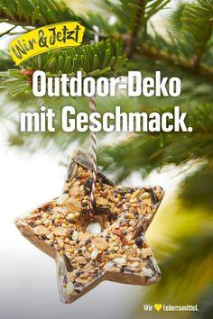 Mit den winterlichen Vogelfutter-Anhängern peppst du nicht nur deinen Garten oder Balkon auf, sondern machst auch den Vögeln eine Freude. Einfach Keksformen auskleiden, mit heißem Kokosöl ausgießen, Haferflocken hinzufügen, auskühlen lassen – fertig! #edeka #vogelfutter #deko #garten #diy #selbstgemacht #nachhaltig Christmas Crafts For Adults, Winter Crafts For Kids, Christmas Time, Xmas, Diy Snowflake Decorations, Christmas Decorations, Snow Flakes Diy, Programming For Kids, Christmas Gingerbread