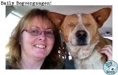#dogisgood #dogvergnugen www.dogisgood.com