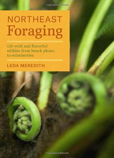 Northeast Foraging: 120 wild and flavorful edibles from beach plums to wineberries by Leda Meredith http://www.amazon.com/dp/1604694173/ref=cm_sw_r_pi_dp_oDOqub1AA32NH