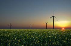 5 Tipos de Energias Limpas Existentes