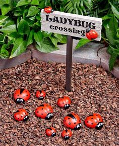 Ladybug Garden, Ladybug Decor, Ladybug House, Owls Decor, Art Decor, Home Decor, Garden Care, Outdoor Projects, Outdoor Crafts