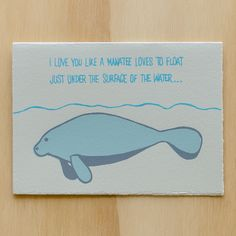 Love You Like A Manatee