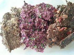 Zdravá syrová raw strava - recepty, tipy a návody | Raw Vegan, Ayurveda, Detox, Herbs, Fit, Shape, Herb, Leaf Vegetable, Medicinal Plants
