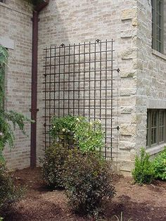 Image result for metal trellis against stucco