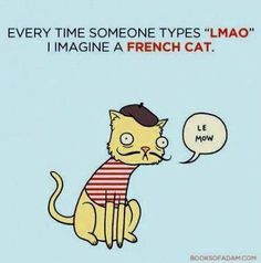 LMAO,  French cat