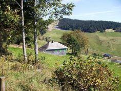 Cabaña de Heidegger.Todtnauberg
