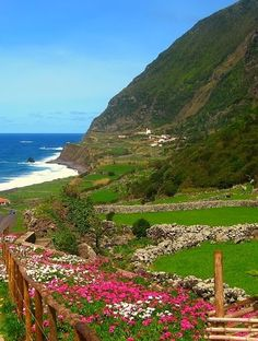 Island of the Flowers/Flores - Açores - Portugal - Would love to see this island when the flowers are blooming.