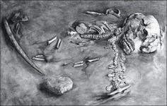 Results from a DNA study of a young boy's skeletal remains believed to be 24,000 years old could turn the archaeological world upside down – it's been proven that nearly 30 percent of modern Native American's ancestry came from this youngster's gene...