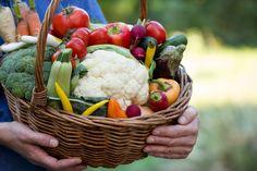 Os alimentos orgânicos são aqueles cultivados sem o uso de agrotóxicos e são uma alternativa mais saudável aos outros alimentos. Quer saber mais? Vem cá!
