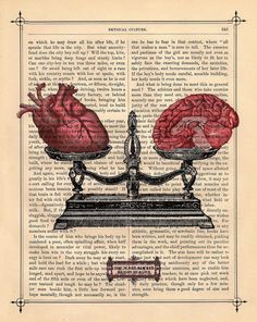 EQUILIBRIUM human HEART BRAIN on dictionary book page art print upcycled anatomical heart brain scale black white art from BlackBaroque on Etsy. Book Page Art, Book Art, Medical Wallpaper, Soirée Halloween, Brain Art, Brain Drawing, Drawing Faces, Medical Art, Anatomical Heart