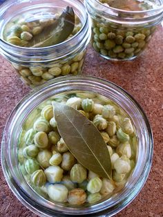 Poor Man's Capers: Pickled Nasturtium Pods | Garden Betty