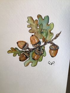 Acorns Watercolor Card by gardenblooms on Etsy
