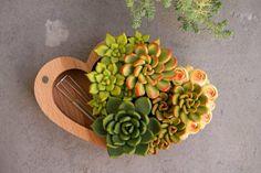 Jewelry box) Link in bio☝☝☝ #wedding #plants #succulents #succulent #cactus #green #nature #garden #plant #terrariums #handmade #succulove #gardening #homedecor #proposal #decor #design #minigarden #greenthumb #terrario #suculentas #glass #cacti #多肉植物 #succulentlove #fairy #interiordesign #decoration #homedesign #love