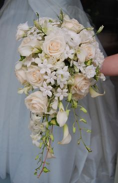 Cascade Bridal Bouquet    White flowers such as roses, mini callas, stehanotis and orchid create this simple but elegant bridal bouquet