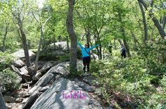 I love hiking at Bear Mountain State Park in New York State.  RP for you by http://lisa-dizenzo-dchhondaofnanuet.socdlr2.us/