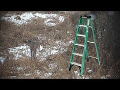 How to Turn a Step Ladder Into a Portable Hunting Stand Folding Ladder, Diy Ladder, Wood Ladder, Deer Hunting, Hunting Stuff, Hunting Tips, Deer Bait, Climbing Stands