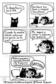 Sarah's Scribbles En Español : Photo