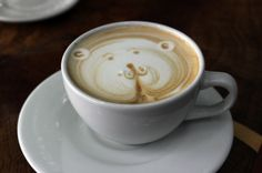 tree house coffee artist   - Costa Rica