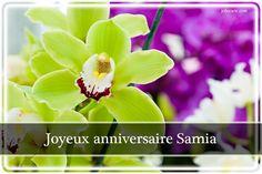 Joyeux anniversaire Samia - Joliecarte.com