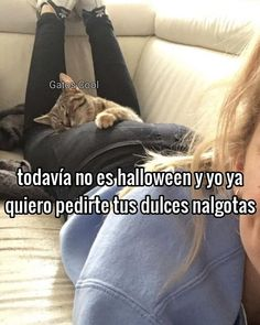 "Gatos Cool en Instagram: "". . . #memesdegatoscool #gatoscool😸 #gatos_cool #🍑 #halloween #halloweencats #dulceotruco"""