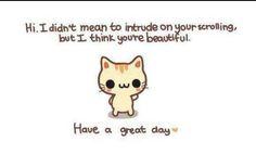 it be le compliment cat